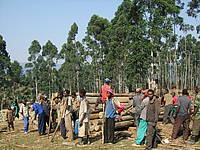 Photo showing People in Forest.