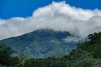 Photo showing Cloud forests in Rincón de la Vieja National Park in Costa Rica. Photo © iStock: PobladuraFCG