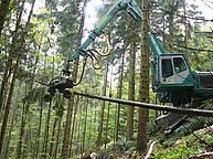 Harvester Königstiger T30 – 1