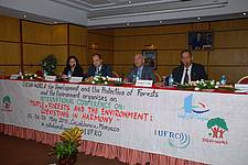 """Photo showing Panel of the """"People, Forests and the Environment: Coexisting in Harmony"""" conference, Casablanca, 2010"""