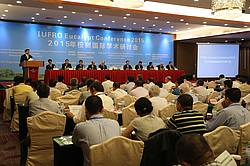 Photo showing the Panel at Eucalypt meeting in Zhanjiang. Photo provided by FABI.