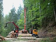 3-4 cables cable yarder, truck mounted, equipped with a crane and grapple http://www.mm-forsttechnik.at/syncrofalke/1001.php