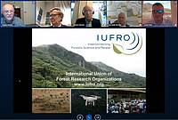 Photo showing Conference Brasov, October 2020: IUFRO presentation by Bogdan Strimbu. Credit: Screenshot from Youtube.com