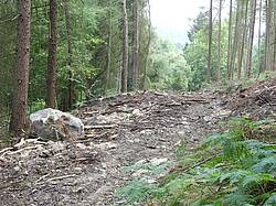 Photo showing Damage by contemporary forestry extraction, North Yorkshire, England. Photo by Ian Rotherham