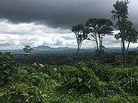 Photo showing  Forested landscape in Malawi (photo courtesy of Jennifer Zavaleta Cheek)