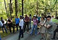 Photo showing Field trip participants study the forest management practices of the Washington State Department of Natural Resources on the Olympic Peninsula, USA during the 17th SSAFR on August 27, 2017. Photo: Mikael Rönnqvist.