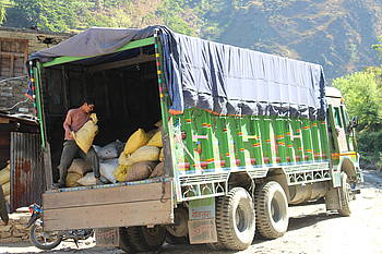 Photo showing Big business - here dried medicinal plants on the way to industries in Nepal. Photo by Carsten Smith-Hall