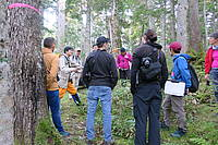 Photo showing Abies 2016 Post-conference tour.