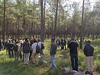 Photo showing Field trip during the conference of IUFRO entomology Working Parties 7.03.14, WP 7.03.06, WP 7.03.01, April 2014, in Antalya, Turkey