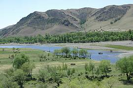 Photo showing Riparian vegetation and landscape in Mongolia, a country where freshwater resources are scarce – Photo by Alexander Buck, IUFRO