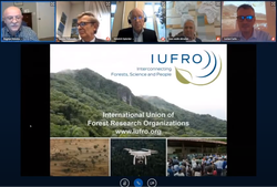 Photo showing IUFRO presentation by Bogdan Strimbu (first from the left) on Youtube.com