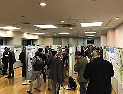 Photo showing Poster session at the 2017 Tokyo conference of RG 7.01.00. Photo: IUFRO Tokyo 2017.