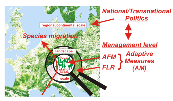 Graphic showing map explaining the Adaptive Measure Approach