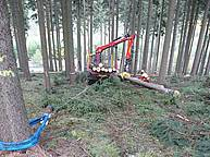 Forwarder Welte W240 with traction winch – 1
