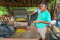 Photo showing the machines used to separate the fruit and the seed, allowing these small nurseries to save on costs in Costa Rica.  Sabin Ray,  World Resources Institute