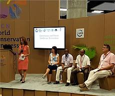 Photo showing the panel of IUFRO Session on Governance and Forest Landscape Restoration at IUCN Congress