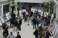 Photo showing Poster session during the 2019 WP meeting in Suceava, Romania. Photo: Ramona Scriban.