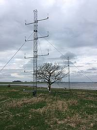 Photo showing Oak tree at Risø campus, Roskilde, which is monitored for movement in the wind. Masts are instrumented with sonic anemometers to measure the flow in front of and behind the tree. Copyright: Barry Gardiner, EFI