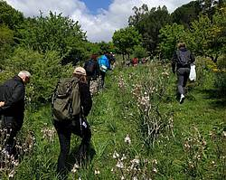 "Photo showing delegates during Excursion post-congress in the ""Ficuzza Forest"", a natural reserve."