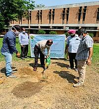 Photo showing Celebrating Biodiversity 2021: The Director of Research PAU, Dr. N. S. Bains on plantation of indigenous trees at University premises.