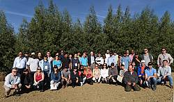 Photo showing Participants of the post-conference tour in front of a 19-month-old coppice close to Castelnaudary (France) on 21 September 2018. Copyright: Luo Jianzhong (China Eucalypt Research Centre)