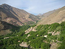 Photo showing a landscape with a low forest in the Atlas Mountains of Morocco. Photo: Alexander Buck, IUFRO.
