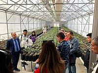 Photo showing Discussion on oak production at the Denizli Forest Nursery, Denizli, during the conference in Turkey, 2018. Photo courtesy of Conference Organizing Committee.