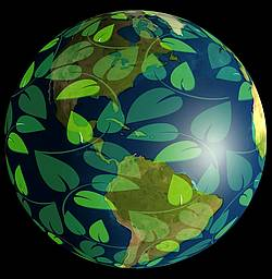 Graphic showing globe with leaves around it. Gerd Altmann on Pixabay