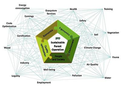 Graphic showing the complex system of relationships involved in the SFO concept and its five performance areas including: Economics; ergonomics; environment; quality optimization; and people and society. (Credit: Enrico Marchi, Florence University, Italy)