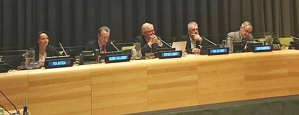Photo showing IUFRO-WFSE Panel at the side event in UNFF12.