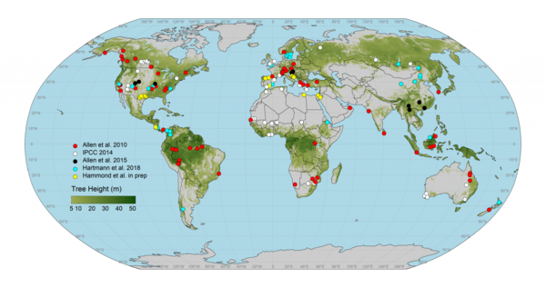 Graphic showing Global map of documented tree mortality events related to drought and hotter temperatures.  Events taken from Allen et al. 2010, IPCC 2014, Allen et al. 2015, Hartmann et al. 2018, Hammond et al. in preparation.  The map currently is being populated with ~1000 precisely georeferenced research plots that document these mortality events by William Hammond. Tree height data are from Simard et al., 2011. Graphic: International Tree Mortality Network.